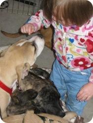 baby_puppies3_june_13_2009