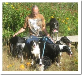 six_border_collies_and_den_sept_27_2009sm