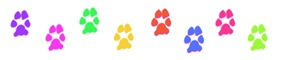 colorful-mini-paw-divider-brights