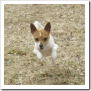 paco_march_10_2010