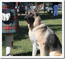 celtic_fest_pups_liberty_sept_5_2010sm