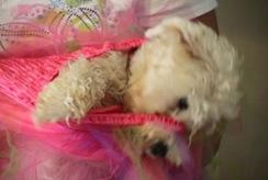 08_02_2011Sebrina Tingley8681