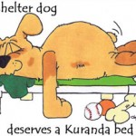 every_shelter_dog