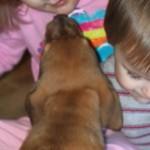 molly_kids_january_5_2012 013 (3)
