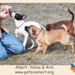 albert_valina_arlo_feb_26_2017ps