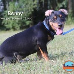 benny_june_23_2017 131 (30)ps