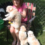 sophia with pups june_29_2017 107 (2)ps