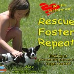 rescue_foster_alex_sophie_outside_july_9_2017ps