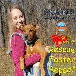 frankie_nov_24_2017 (1)ps