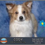 cody_feb_23_2018 (3)ps