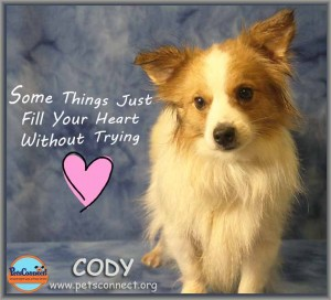 cody_feb_23_2018 (4)ps