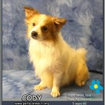 cody_feb_23_2018 (6)ps
