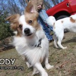 cody_feb_25_2018 (6)ps