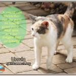 ursula_march_20_2018 (4)ps