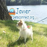 javier_july_26_2018 (7)ps